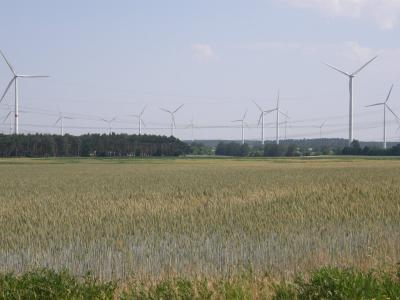 Windpark bei Rosenthal