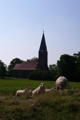 Blick vom Damm nordwestlich des  Dorfes auf die Kirche