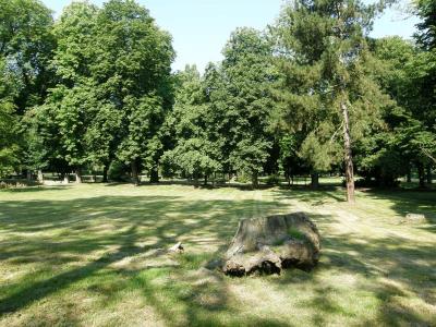 Schlosspark in Dahme/Mark