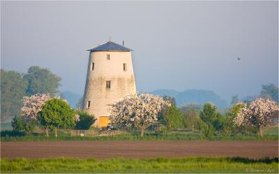 (Foto: Thomas Agit, Unseburg)