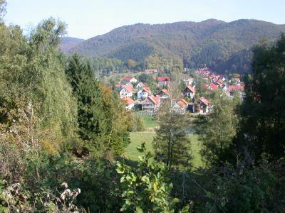 Blick auf Sülzhayn