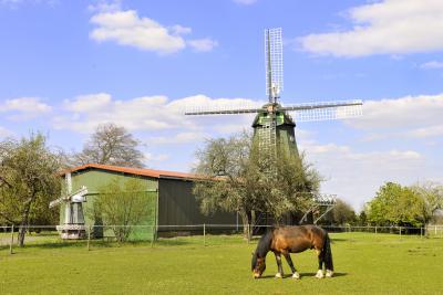 Das Wahrzeichen von Mulsum: Mühle Anna-Maria. Foto: Andreas Dittmer