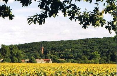 Reitwein - Perle des Oderbruchs (Foto: H. Kaiser)