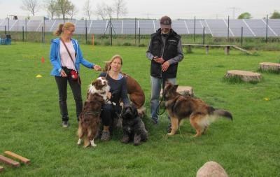 Hundeschule neuenhagen