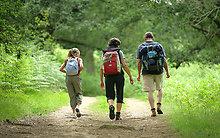 Wandern im Rönner Gehölz; Quelle: Gemeinde Pohnsdorf