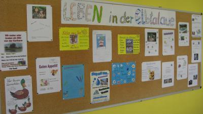 """Foto zur Meldung: Schulprojekt  """"Leben in der Elbtalaue"""""""
