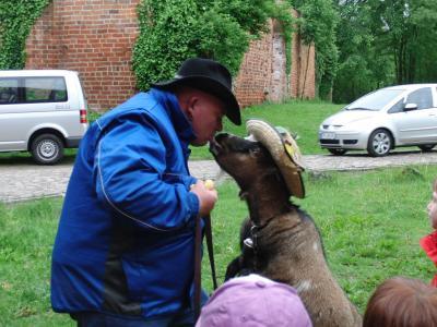 Foto zur Meldung: Kindertag mit vielen Tieren