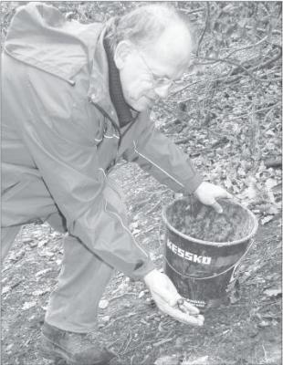Foto zur Meldung: Mit Eicheln gegen den Erdrutsch