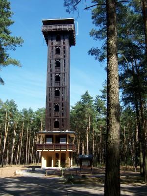 Foto zu Meldung: Heidebergturm-Lauf  am 19. September 2010