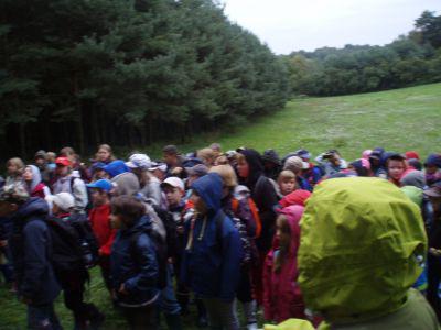 Foto zur Meldung: Waldprojekt  2010