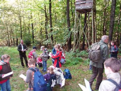 """Vorschaubild zur Meldung: Exkursion """" Wald"""""""