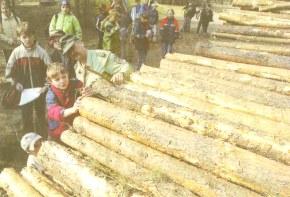 Foto zur Meldung: Lernen im Wald