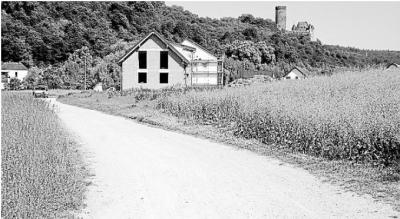 Foto zur Meldung: Ortsgemeinde: Weg durch die Au wird zur Umleitungsstrecke