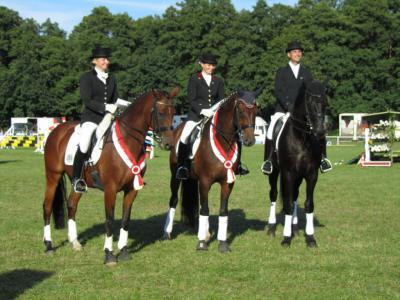 Foto zur Meldung: Kreismeistertitel 2011 im Reiten geht nach Freyenstein