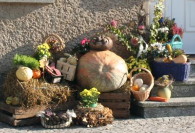 Foto zur Meldung: 1. Erntefest der Großgemeinde Wusterhausen war ein voller Erfolg