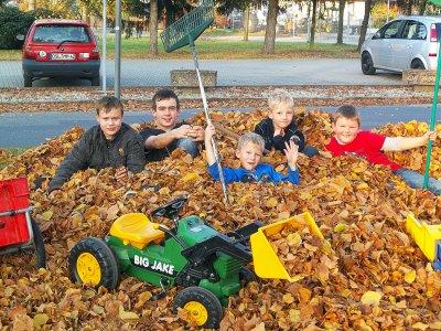 Foto zur Meldung: Fleißige Werchower Jungs im Laubeinsatz