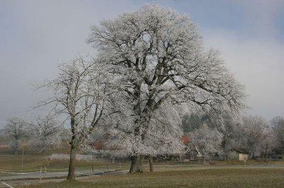Foto zur Meldung:  Winterferien - eine kleine Pause
