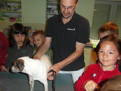 Foto zur Meldung: Besuch beim Tierarzt Dr. Müller in Egeln