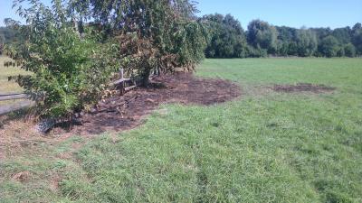 Vorschaubild zur Meldung: Bodenfeuer Penningsfelder Weg