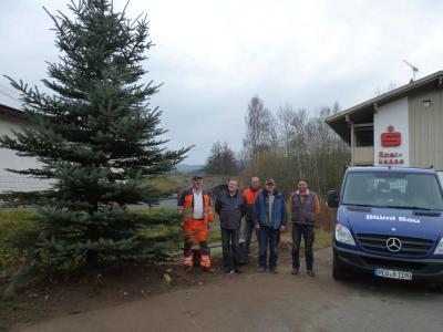 Foto zu Meldung: In Prackenbach erstrahlt in der Weihnachtszeit wieder ein großer Christbaum