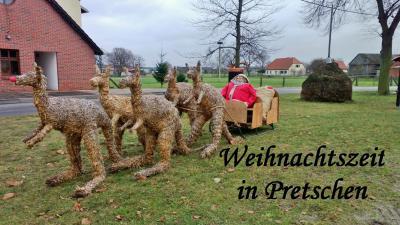 Foto zur Meldung: Kängurus in Pretschen zu Weihnachten