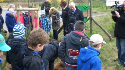 Foto zur Meldung: Schüler der Klasse 3b pflanzen Baum des Jahres