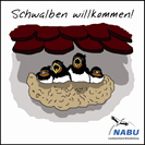 """Foto zu Meldung: """"Schwalben willkommen!"""" – Rathaus erhält NABU-Auszeichnung"""