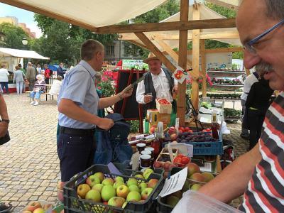 Foto zur Meldung: Heimat in Brandenburg
