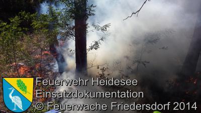 Foto vom Album: Einsatz 53/2014 am 28.08.2014 > Waldbrand AS Friedersdorf