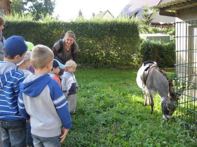 Foto zur Meldung: Ein Eselsritt zum Geburtstag!!!