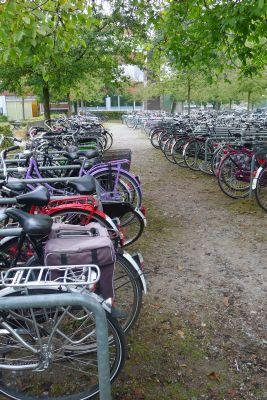 Vorschaubild zur Meldung: Erfolgreiche Fahrradparkplatz-Aktion