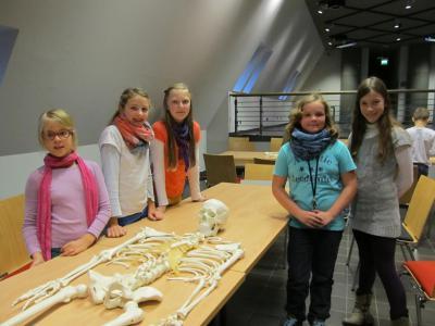 Foto zur Meldung: Die Klasse 5l besucht das Archäologische Landesmuseum Brandenburg