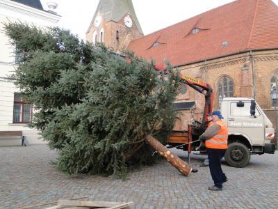 Foto zur Meldung: Aufstellung des diesjährigen Tannenbaum 2014