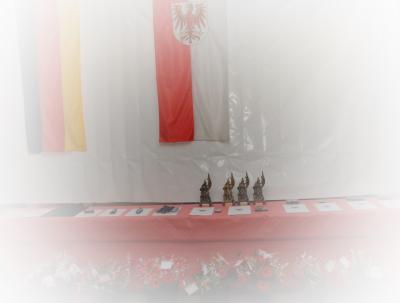 Foto zur Meldung: Auszeichnungsveranstaltung der Freiwilligen Feuerwehren des Amtes Niemegk 2014