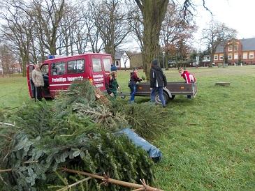 Foto zur Meldung: 29 Weihnachtsbäume wurden eingesammelt