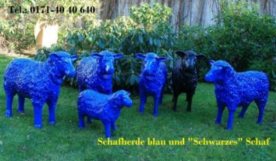 Schafherde blau/schwarz