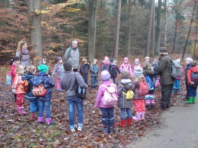 Vorschaubild zur Meldung: Waldtag 2014