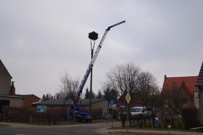 Foto zur Meldung: Reinigungsarbeiten vom Storchennest