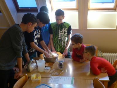 Foto zur Meldung: Die Klasse 8d und das Projekt Havelschule