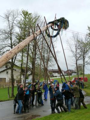 Foto zu Meldung: Sechs Maibäume in der Gemeinde Prackenbach