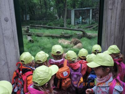 Foto zur Meldung: Kindertag im Tierpark Rabenstein