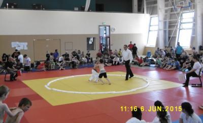 Foto zur Meldung: 18. KJSS im SUMO  in Großräschen