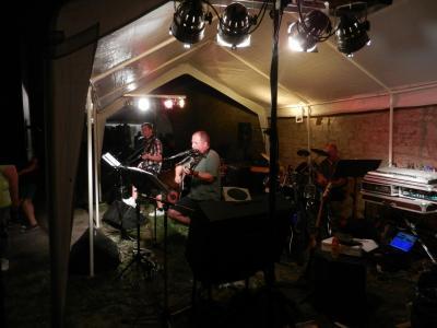 Foto zur Meldung: Haineck-Hof voller Blues, Folk und Rock