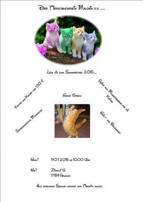 Foto zur Meldung: Sommerfest 2015 des Tierschutzverein Malchin e.V.