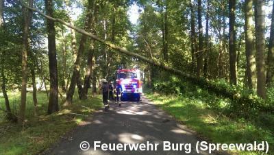 """Vorschaubild zur Meldung: Einsatz Nr. 123/2015 - """"Zeljko"""" sorgt für umgestürzte Bäume"""