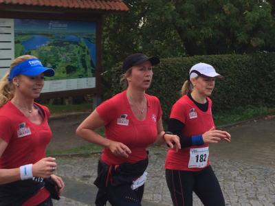 Foto zu Meldung: Der 15. Fleesensee Lauf