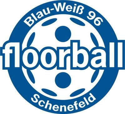 Foto zu Meldung: Floorball Damen – zum Saisonauftakt Heimspielsieg