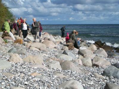 Vorschaubild zur Meldung: Wanderwoche auf Rügen, der schönsten Insel Deutschlands
