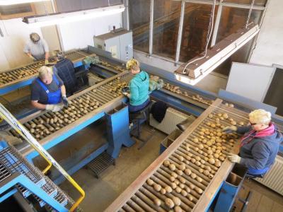 Foto zur Meldung: Unser Besuch in der Kartoffelhalle des ALV Crivitz