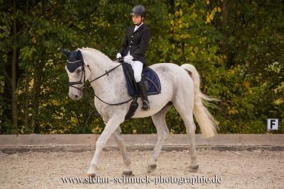 Foto zur Meldung: Jana Fischer und Royal